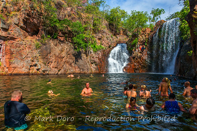Waiting for the show to start, Florence Falls, Litchfield, Northern Territory