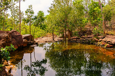 Buley Rockhole, Litchfield, Northern Territory