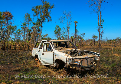 Didn't make it, near Blyth homestead, Litchfield, Northern Territory