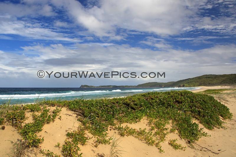 2016-03-17_1093_Sandbar Beach.JPG