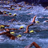 Rottnest Island race