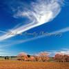 Victorian skies
