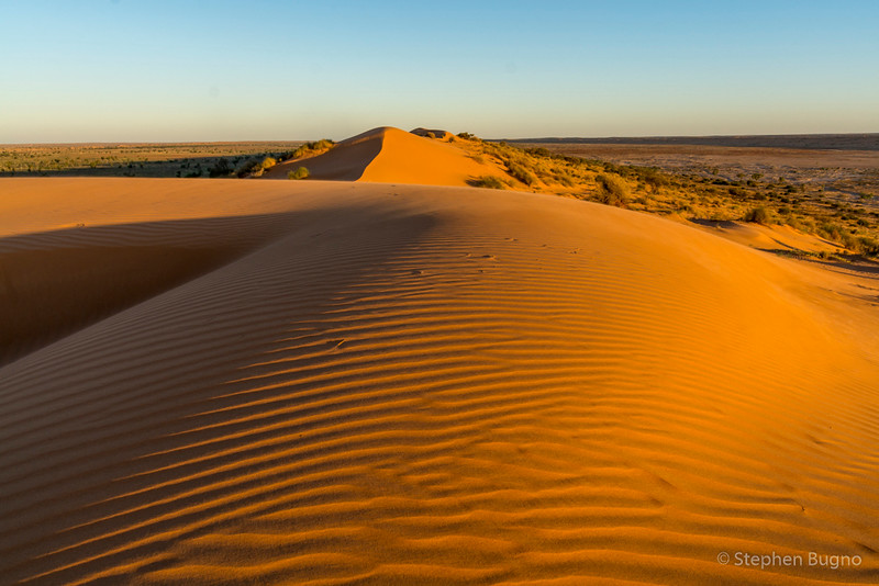 Big Red dunes at sunset