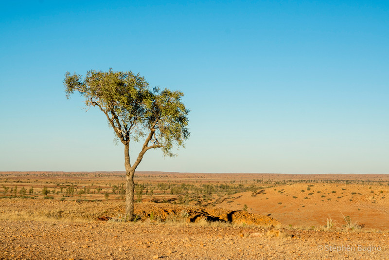 View from the Dingo Caves, outside of Birdsville, QLD.