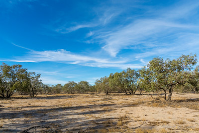 outside Bedourie, QLD