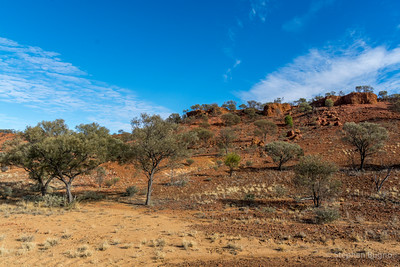 Outback scenery.