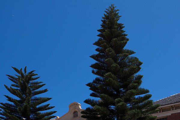 Geraldton - 2014