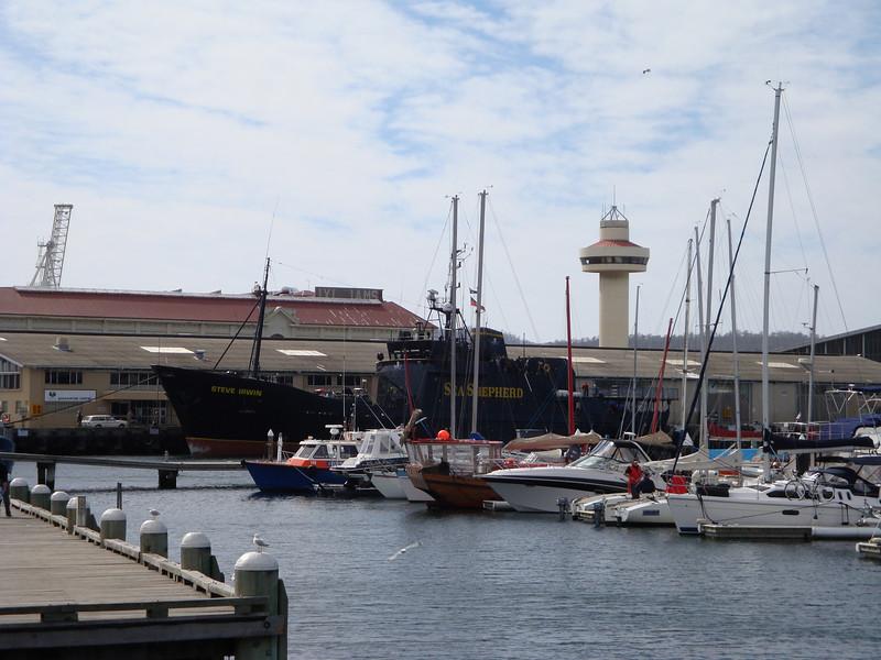 """Steve Irwin, <a href=""""http://www.seashepherd.org/"""">Sea Shepherd</a> ship."""