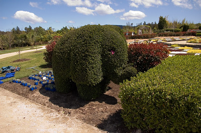 Elephant Hunter Gardens Hunter Valley - NSW Australia - 29 Sep 2005