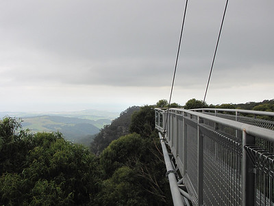 Illawarra Fly Treetop Walk in Robertson, NSW