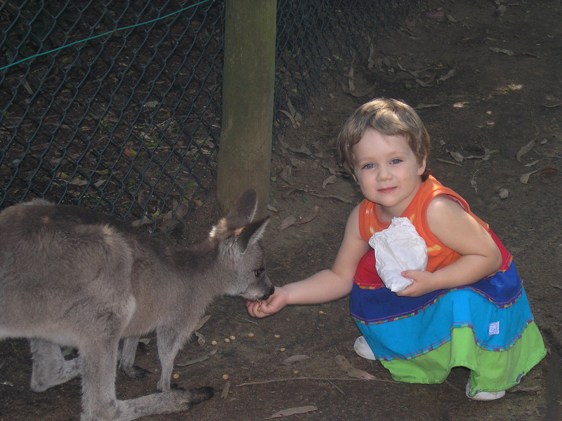Abigail at the Koala Park