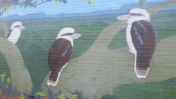 Kurri Kurri, NSW