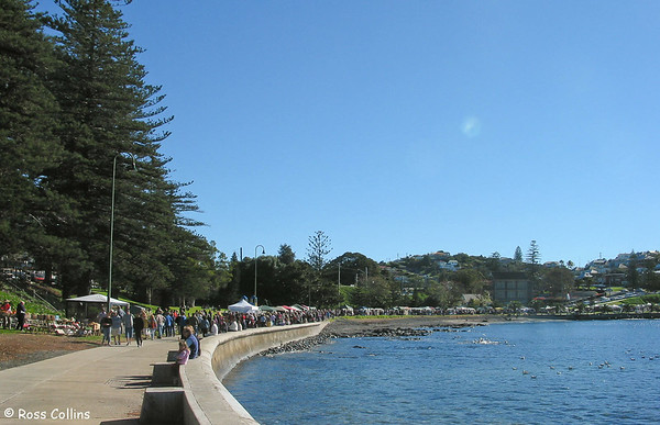 Illawarra and Southern Highlands, New South Wales, Australia