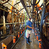 Warren Gallagher in the dairy at his farm in Clunes, Northern Rivers, NSW, Australia