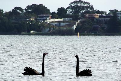 Perth-Adelaide-Sydney-Melbourne-2008