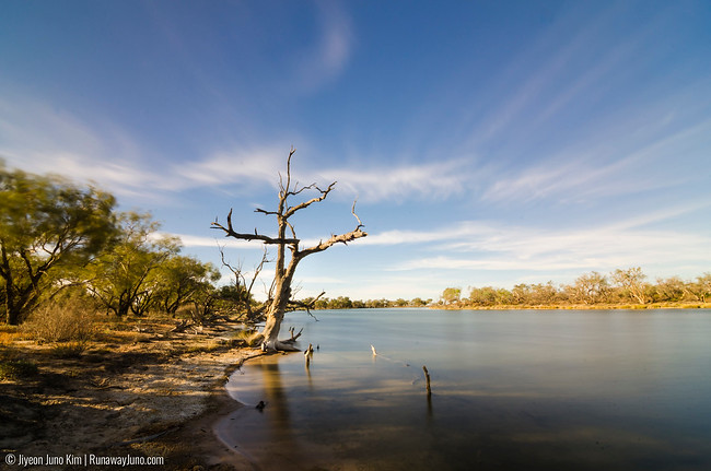 Australia's best kept secrets: the crystal clear waters of Pippegettl Waterhole is fed by the hot desert springs from the Great Artesian Basin.