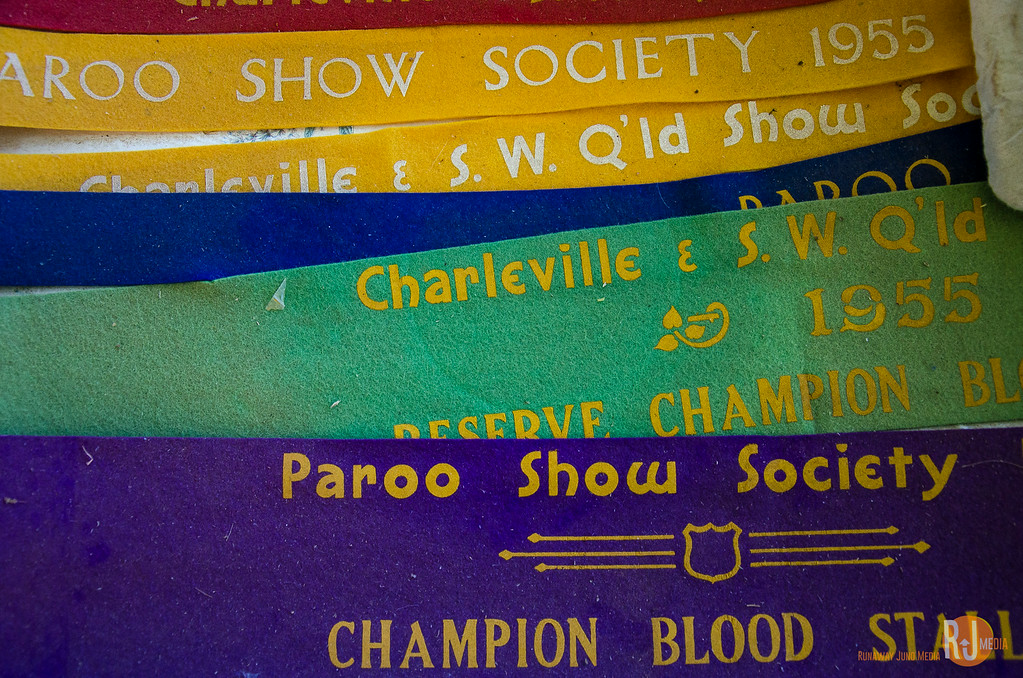 Champion ribbons