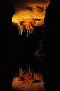 The Naracoorte Caves in South Australia