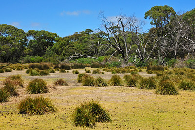 Weekend on Kangaroo Island