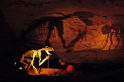 The Naracoorte Caves in South Australia - thousands of fossils were found here
