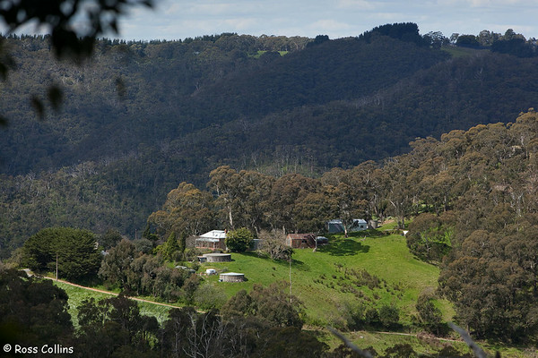 Adelaide Hills, South Australia, October 2009