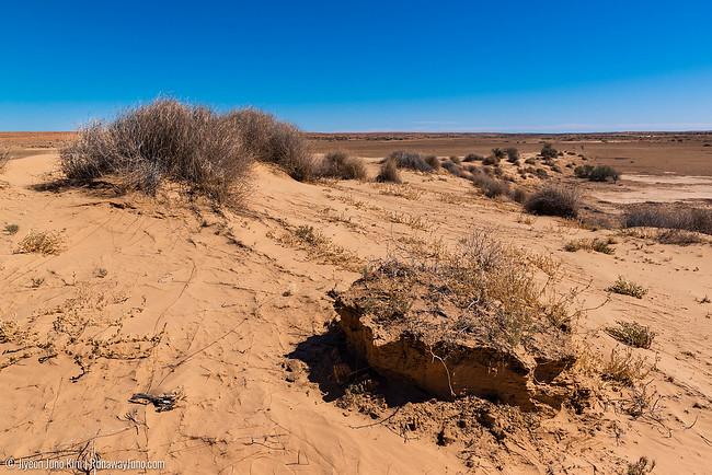 Sand hills at Pandie Pandie