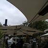 birdy umbrella