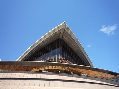 2010 Sydney Phoenix Trip - 019