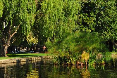 Carlton Gardens in Melbourne