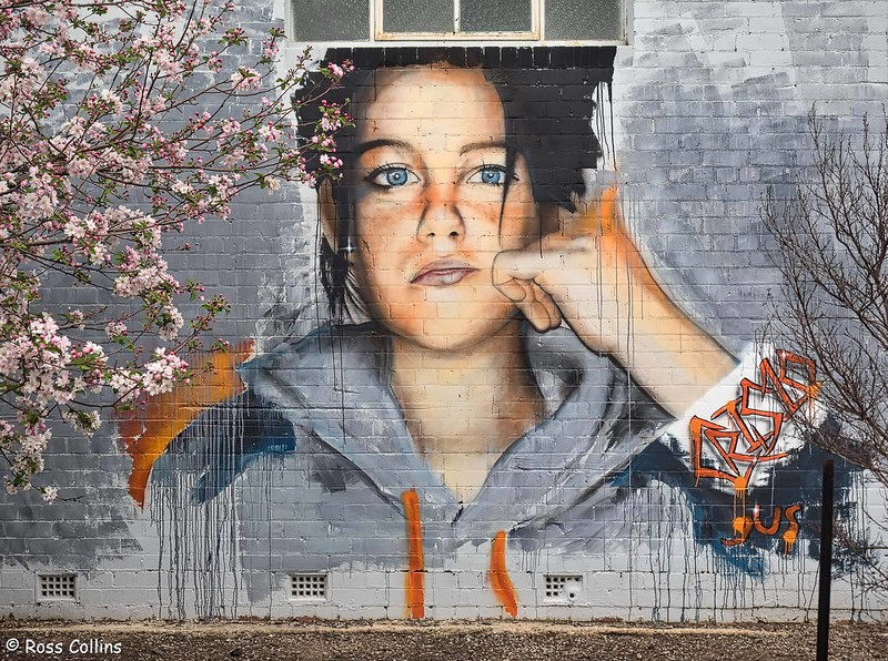 Benalla Street Art, Australia, 25/26 September 2019