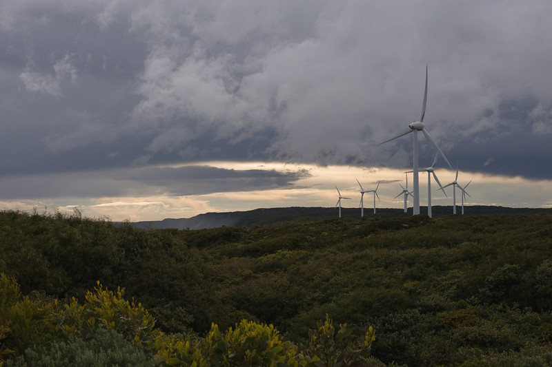 Albany Wind Farm, Western Australia, September 2009