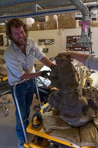 Australian Age of Dinosaurs.
