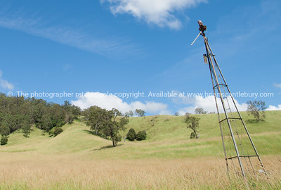 Australia, Landscape near Kyogle.  see also http://smu.gs/14LcY8Y Fine Art Photograhpy for abstract landscapes.