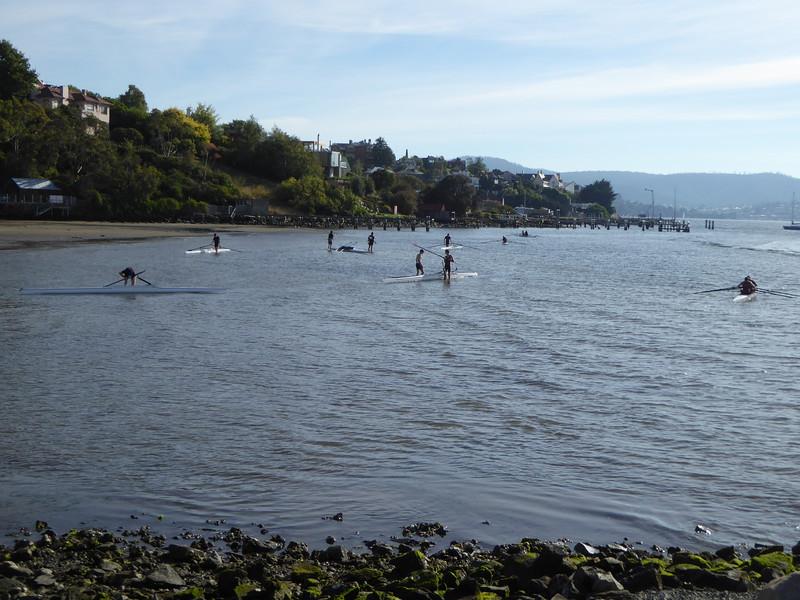 Paddleboarders at Sandy Bay, near Hobart