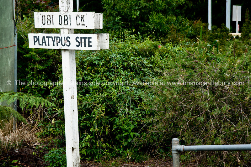 Obi Obi Creek sign, Platypus site!