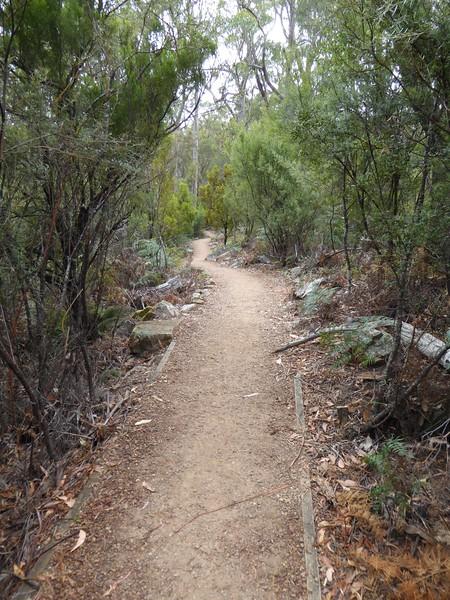 Alum Cliffs Lookout Walk