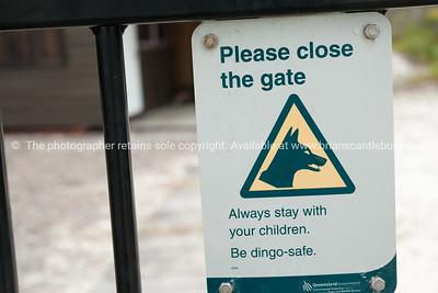 Dingo Sign