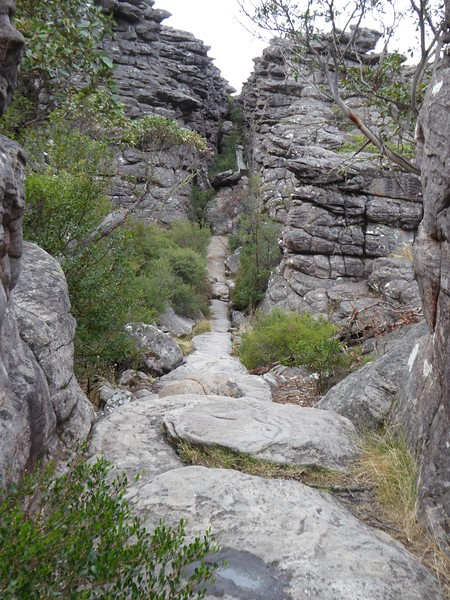 Silent Street, on the way to the Pinnacle, Grampians