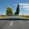 The road ahead. Australia, Rural scenics from the Kings Highway, with white lines along road.
