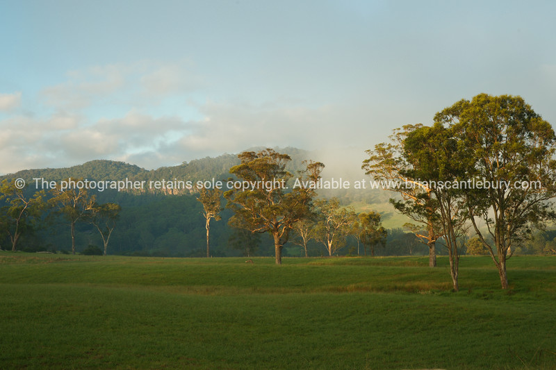 "Kangaroo Valley, Rural scene, mist, gum trees, and hills.<br />  see also <a href=""http://smu.gs/14LcY8Y"">http://smu.gs/14LcY8Y</a> Fine Art Photograhpy for landscapes."