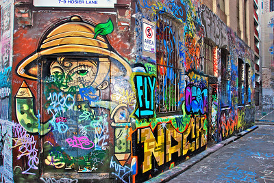 Street art in Melbourne.  Beware of the crack-head that hangs out in this alley, he does NOT like his photo taken.