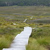 Lake Lilla Track Boardwalks