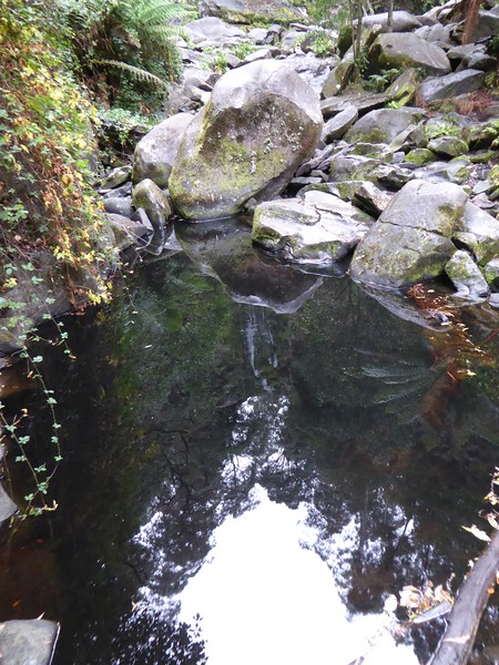 Reflection of Erskine Falls, Great Ocean Road