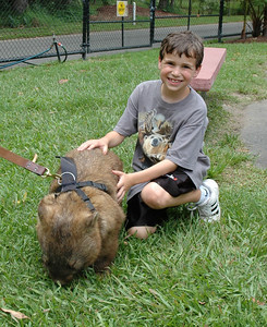 Copy of Alex with Dozer the wombat