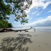 Thornton Beach. Daintree Rainforest. Port Douglas, Australia