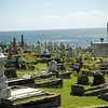 'Oh what a grand view'. The amazing Waverly Cemetery in Sydney, Australia.