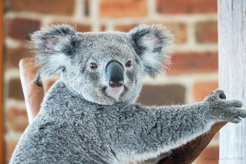 Australia-0712