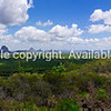 Panorama Australian landscape taking in Glass House Mountains, area of bush and farms with pine forests