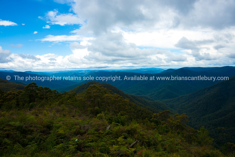 "Australian Rainforest. Expansive view from Raspberry Hill.<br />  see also <a href=""http://smu.gs/14LcY8Y"">http://smu.gs/14LcY8Y</a> Fine Art Photograhpy for landscapes."