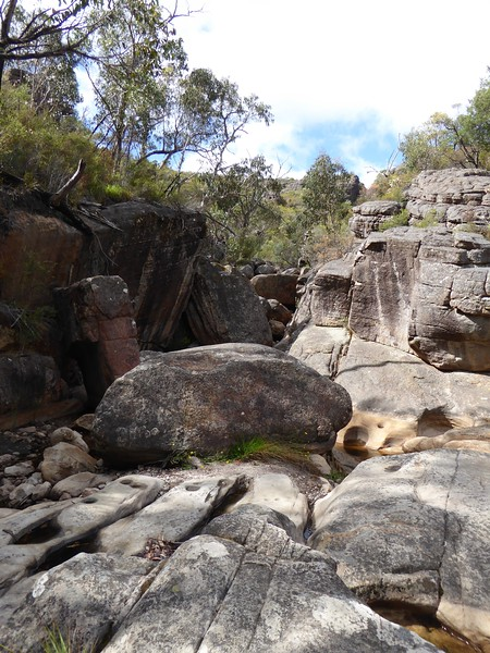 View along track to Splinter Falls, Grampians